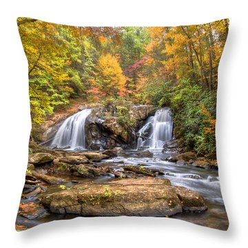 Twin Turtles Throw Pillow by Debra and Dave Vanderlaan