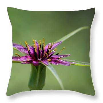 Throw Pillow featuring the photograph Twinkle Twinkle by Richard Patmore