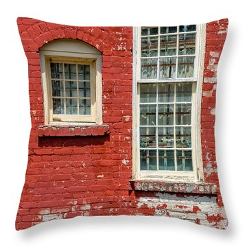 Throw Pillow featuring the photograph Twins by Christopher Holmes