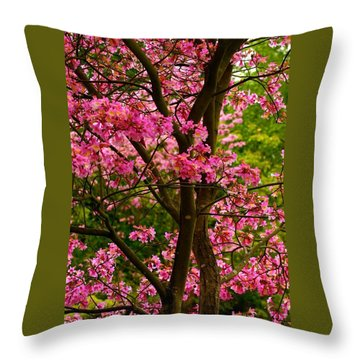 Twist And Turns Throw Pillow