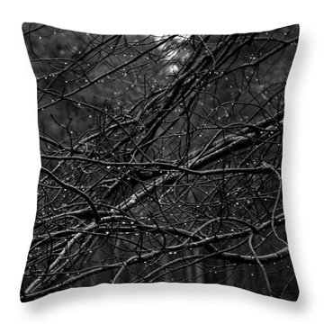 Throw Pillow featuring the photograph Twisted And Wet by Angie Tirado