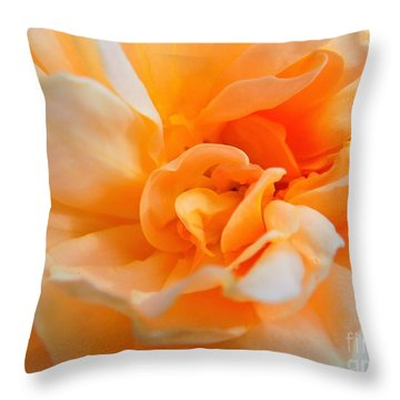 Twisted Dreamsicle Throw Pillow