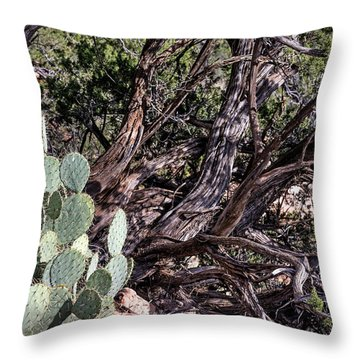 Twisted Throw Pillow by John Gilbert