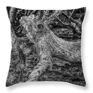 Twisted Throw Pillow by Mark Lucey