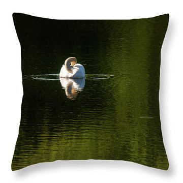 Throw Pillow featuring the photograph Twisted Swan by Onyonet  Photo Studios