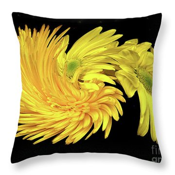 Throw Pillow featuring the digital art Twisted Yellow Daisies by Merton Allen