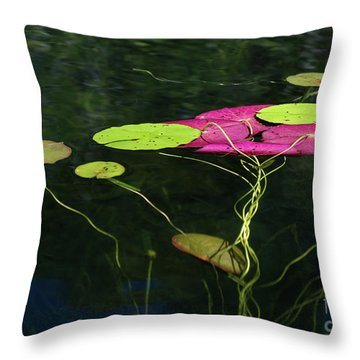 Throw Pillow featuring the photograph Twister by Michelle Wiarda