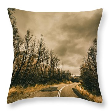 Twists And Turns Throw Pillow