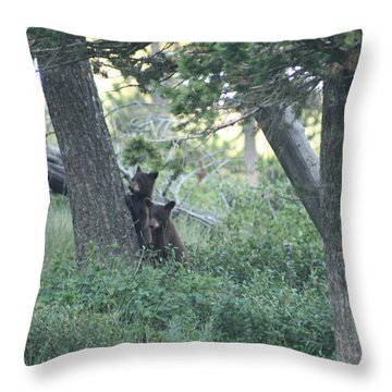 Two Bear Cubs Throw Pillow by Mary Mikawoz
