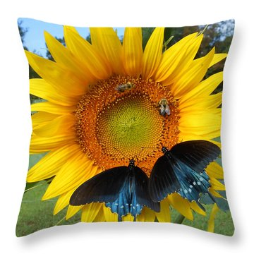 Two Bees And Not Two Bees Throw Pillow
