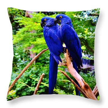 Two Birds Of A Feather Throw Pillow
