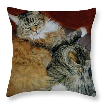 Throw Pillow featuring the photograph Two Brothers by Roger Bester
