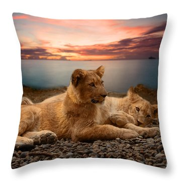 Throw Pillow featuring the photograph Two by Christine Sponchia