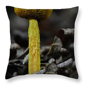 Two Colored Bolete Throw Pillow