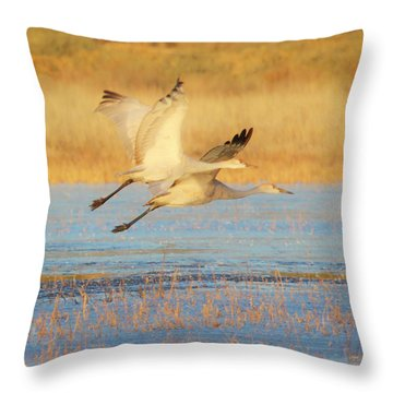 Two Cranes Cruising Throw Pillow