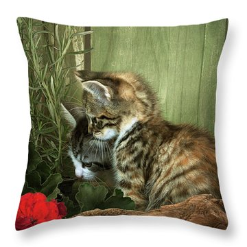 Two Cute Kittens Throw Pillow