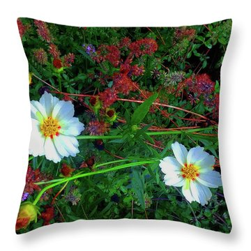 Throw Pillow featuring the photograph Two Daisies by Roger Bester