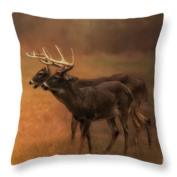 Two For One Throw Pillow by Geraldine DeBoer