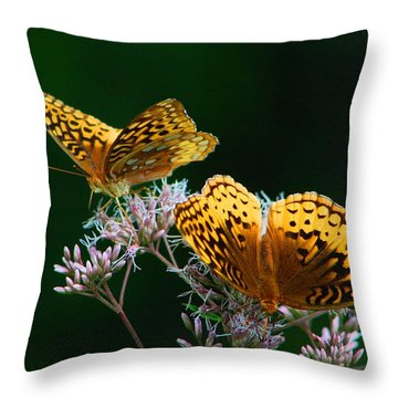 Two Fritillaries Throw Pillow by Kathryn Meyer