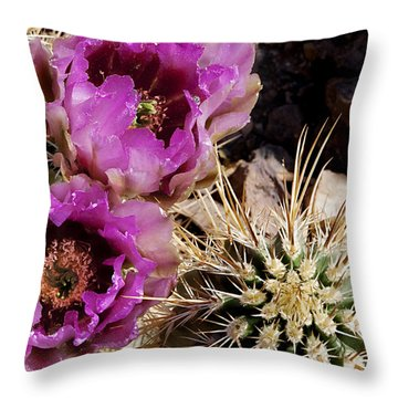 Throw Pillow featuring the photograph Two Fucshia Blossoms  by Phyllis Denton