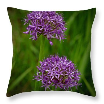 Two Globes Throw Pillow by Tim Good