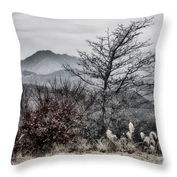 Throw Pillow featuring the photograph Two by Hayato Matsumoto