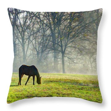 Two Horse Morning Throw Pillow