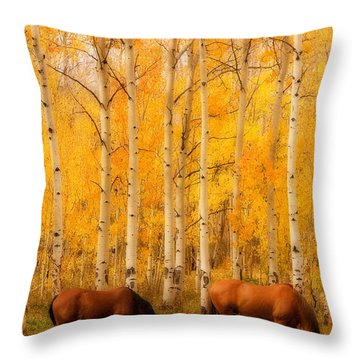 Two Horses In The Autumn Colors Throw Pillow by James BO  Insogna