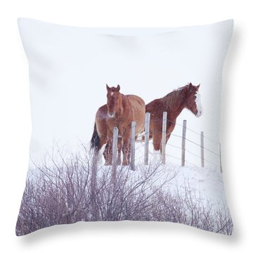 Two Horses In The Snow Throw Pillow
