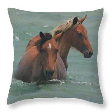 Two Horses Near Shackleford Throw Pillow