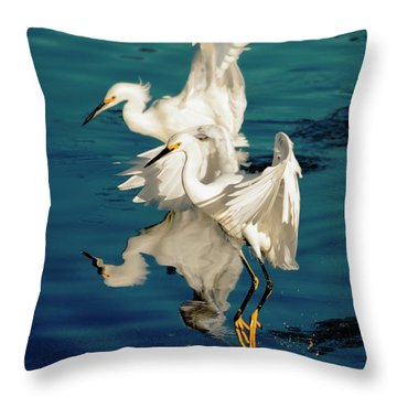 Two In Tandem Throw Pillow