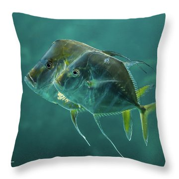 Two In Turquoise Throw Pillow