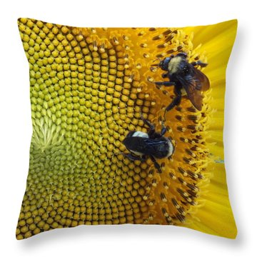 Throw Pillow featuring the photograph Two Is Company by Virginia Coyle
