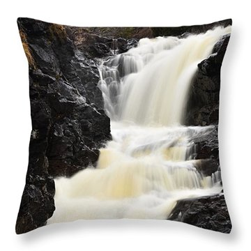 Throw Pillow featuring the photograph Two Island River Waterfall by Larry Ricker