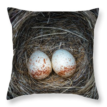 Throw Pillow featuring the photograph Two Junco Eggs In The Nest by William Lee