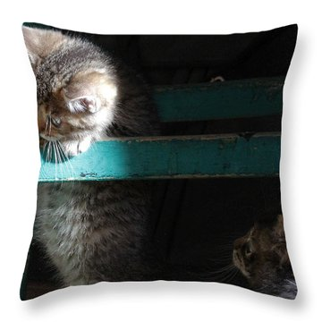 Throw Pillow featuring the photograph Two Kittens With Turquoise Chair by Doris Potter