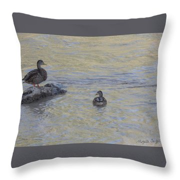 Two Mallard Ducks Throw Pillow
