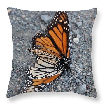 Two Monarchs Aflutter Throw Pillow