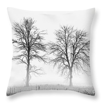 Throw Pillow featuring the photograph Two... by Nina Stavlund