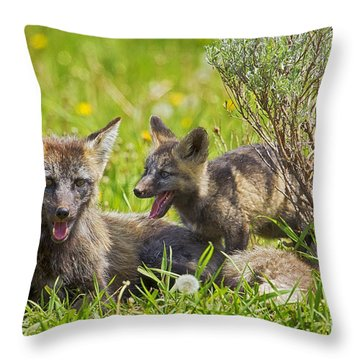 Throw Pillow featuring the photograph My Shadow by Aaron Whittemore