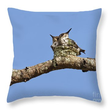 Two Of A Kind... Throw Pillow by Nina Stavlund