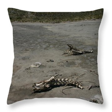 Two Or 2 Halves Of 1 Throw Pillow