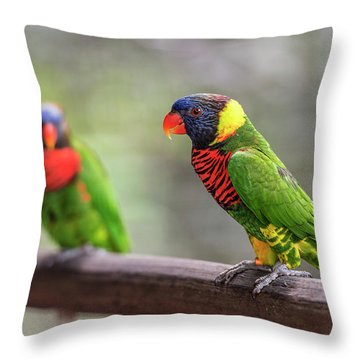 Throw Pillow featuring the photograph Two Parrots by Pradeep Raja Prints