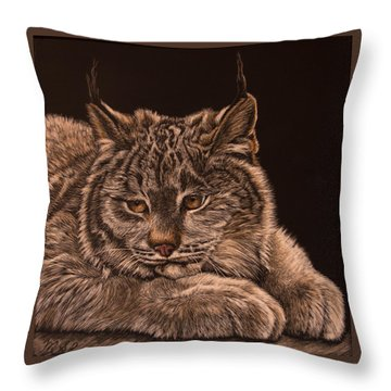 Two Paws Down Throw Pillow