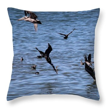Two Pelicans Diving  Throw Pillow