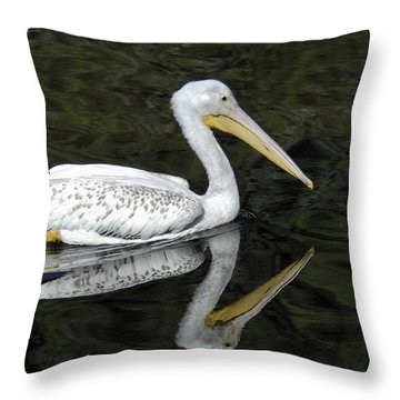 Throw Pillow featuring the photograph Two Pelicans by Howard Bagley
