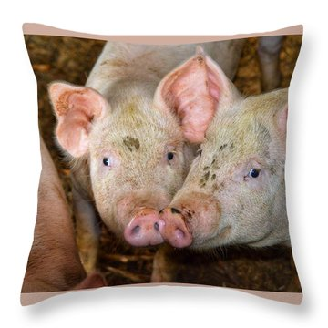 Two Pigs Throw Pillow