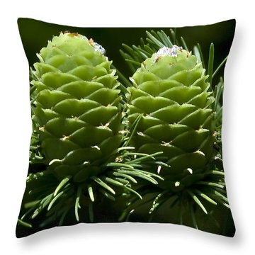 Two Pinecones Throw Pillow by Svetlana Sewell