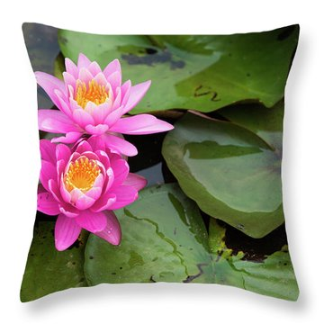 Throw Pillow featuring the photograph Two Pink Lilies by Dennis Dame