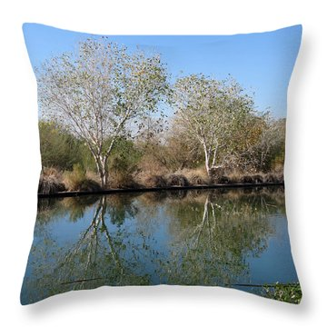 Throw Pillow featuring the photograph Two Reflected by Laurel Powell